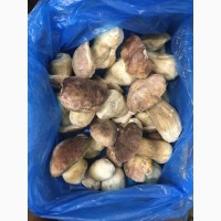 Замороженный белый гриб, целый, 7-12 см