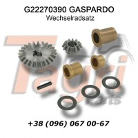 G22270390 Комплект шестерень Gaspardo