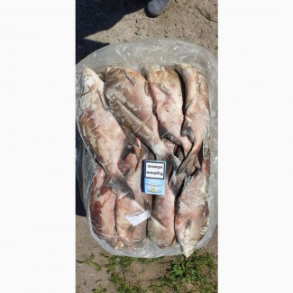 Продам ставковую рыбу в ассортименте: толстолоб, карп, амур, карась, щука. Опт