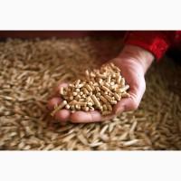 Підприємство реалізовує висівки пшеничні гранульовані