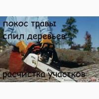 Уборка участка, территории, вывоз мусора, демонтаж, разнорабочие покос трав Одеса