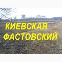Участок земли в аренду Киевская область Фастовский р-н