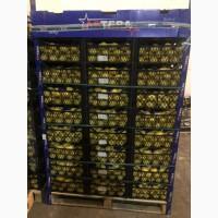 Лиманы опт цена 18 грн 1-й Сорт 40 тонн