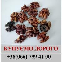 Закуповуємо янтарний горіх дорого