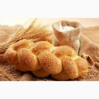 Продам борошно пшеничне в/г, 1/г по Україні та на експорт