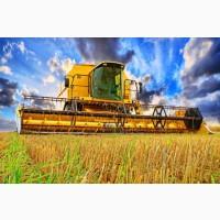 Услуги аренда комбайна Луцк уборка зерновых сои подсолнечника кукурузы Ковель негабарит