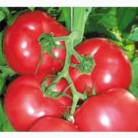 Купить Удобрения и семена овощей 2020, || Агро центр BSProduct Железный Порт