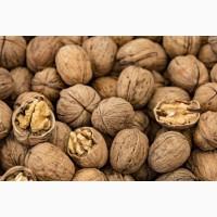 Продам очищенные и целые грецкие орехи