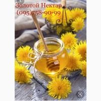 Закупаем оптом мед в Кировоградской и Николаевской обл