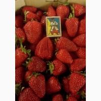 Продам клубнику ягоды малина черешня