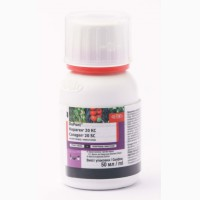 Kораген― інсектицид проти колорадського жука, плодожерки, молі, листовійки