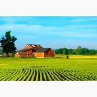 Купуємо сільскогосподарські земельні ділянки в Закарпатті - від 2 га