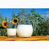 Есть свежее молоко оптом