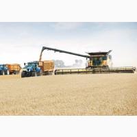 Комплексное сопровождение по выращиванию сельскохозяйственной продукции