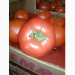 Турецкие помидоры. Дешево