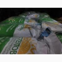 Семена кукурузы ДАНИИЛ, РАМ 8149, РАМ 6475, РАМ 8663