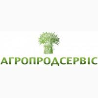 Пропонуємо насіння ярого ячменю сортів Сєбастьян, КВС Алісіана, КВС Данте, 1 репрод