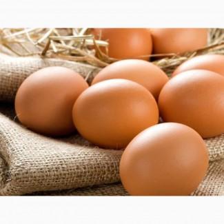 Яйца куриные купить Днепр. Продтовары Днепр