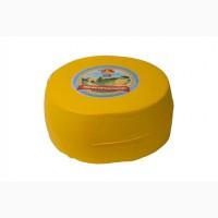 Сыр (круг) оптом, 86 грн/кг