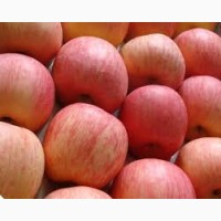 Продам оптом яблука, сорт Фуджі