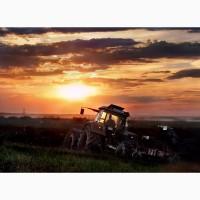 Разбрасывание мин.удобрений, культивация, дисковка, пахота, посев
