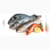 Закупаем рыбу
