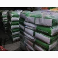 Семена кукурузы РАМ 1333, РАМ 1023, РАМ 3153, РАМ 8143