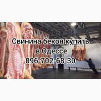 Свинина свежий забой цена
