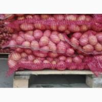 Продам картофель опт с доставкой сорт в налчиии