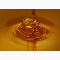 Закупаем мёд оптом. Наш выезд. Оплата по факту взвешивания 100%