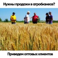 Приводим клиентов для Агробизнеса. Увеличиваем продажи