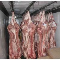 Мясо убоем цена Одесса