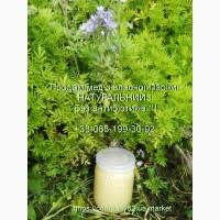 Продам натуральный мёд со своей пасеки. Без антибиотиков