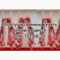 Полутуши свинины цена