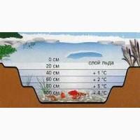 Карп кои Украина, карпы кои цена, малек кои, карпы кои оптом, нимфеи, корм для рыб, садовый пруд
