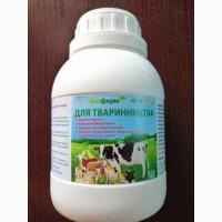Пробиотик для животноводства коровы, свиньи, козы, овцы, лошади и др