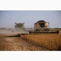 Уборка кукурузы подсолнечника соняшника сои льна Верховына Ивано-Франковск Городенка