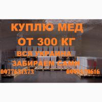 Компания закупает мёд оптом в Запорожской обл. ВЫЕЗД НАШИМ ТРАНСПОРТОМ
