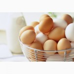 Продам куриние яйца