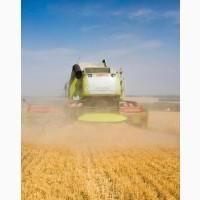 Уборка кукурузы подсолнечника соняшника льна сои Томашполь Винница Тростянец Тульчин