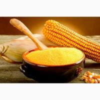 Продам крупу кукурузную ГОСТ