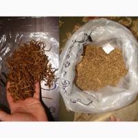 Табак-семена Донецк