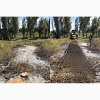 Очистим землю от поросли, пней и корней деревьев