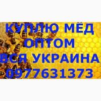 Оптовая закупка мёда ЗАПОРОЖСКАЯ И ДНЕПРОПЕТРОВСКАЯ область, забираем своим транспортом