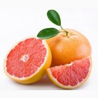 Продаємо Грейпфрут. Прямі оптові поставки з Іспанії