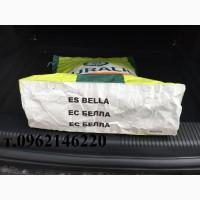 Гибрид подсолнечника Евралис ЕС Белла (Euralis)