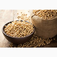 Закупаю сою(ГМО без ГМО)ОПТ