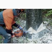 Спиливание, кронирование, фитосанитарн/аварийная подрезки, валка деревь