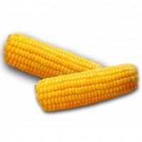 Куплю кукурузу с любой влажностью